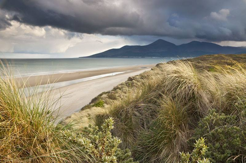 The Murlough National Nature Reserve is a hidden gem of Northern Ireland