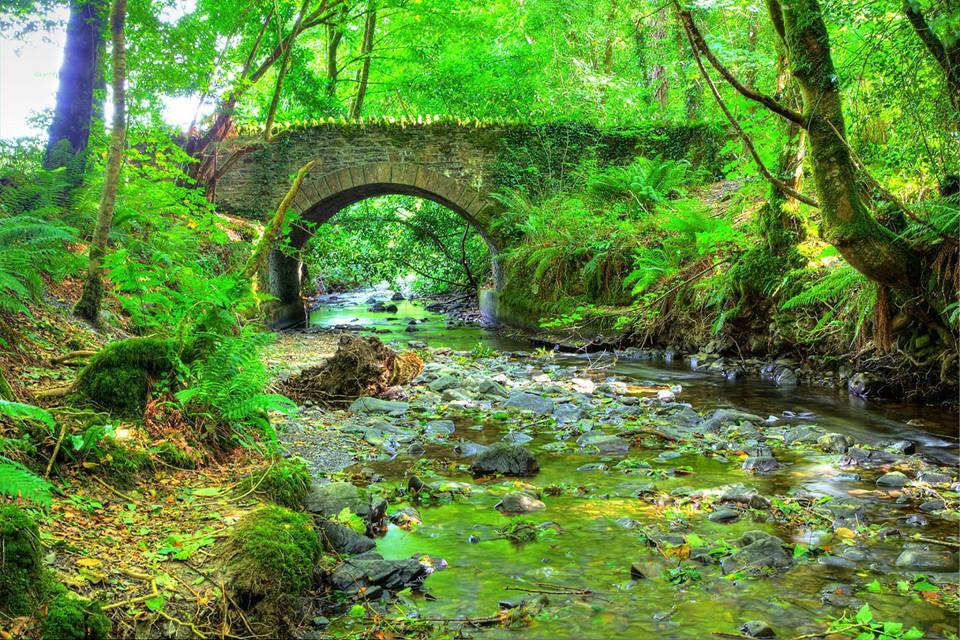 Dun-a-Ri-Forest-Park-Kingscourt