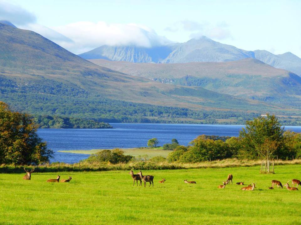 The Irish Bucket List 25 Best Things To Do In Ireland