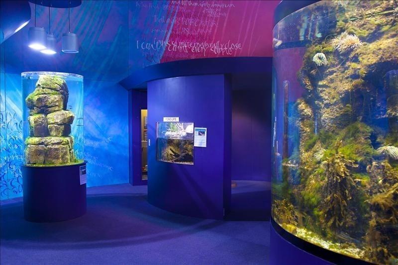 Riverwatch Aquarium (interior)