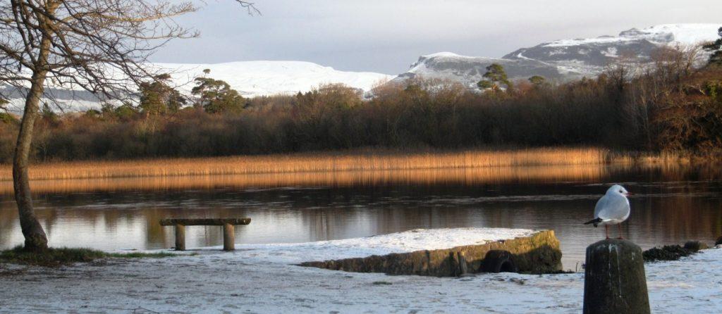Garavogue River Park, Co. Sligo Credit to sligowalks.ie for this one