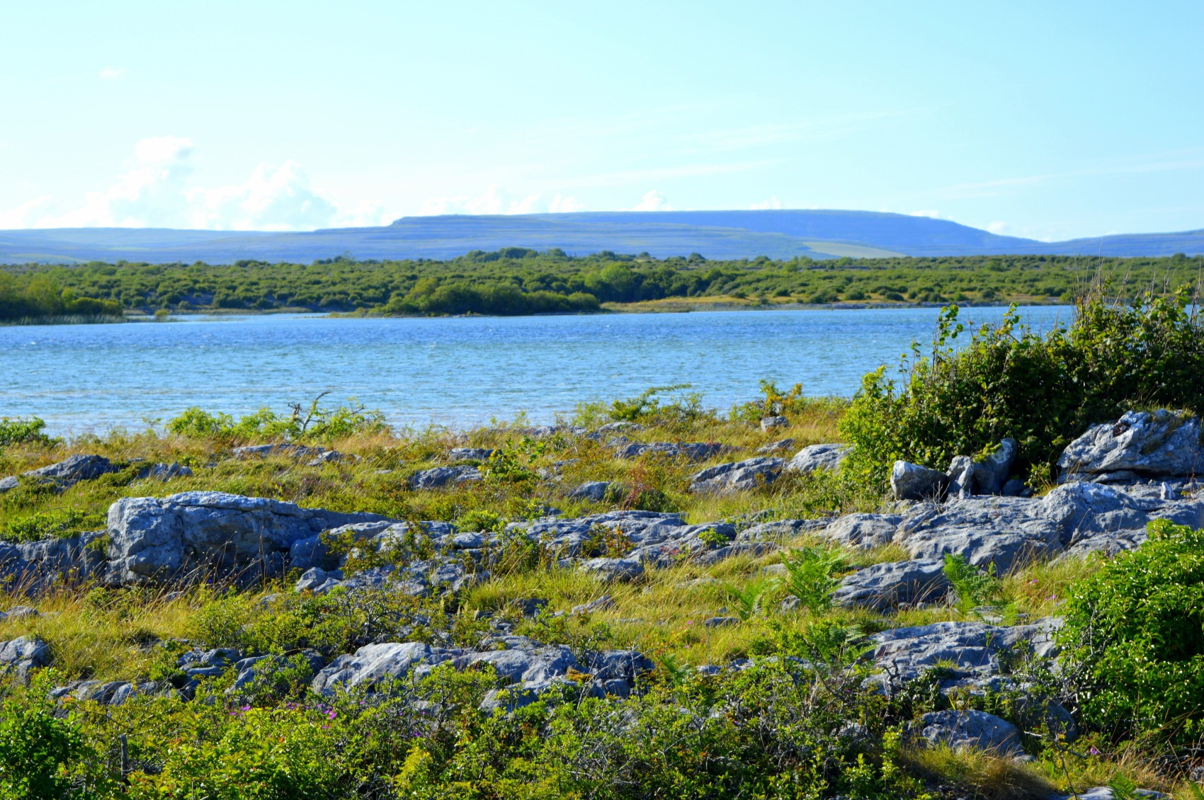 Burren co clare lake