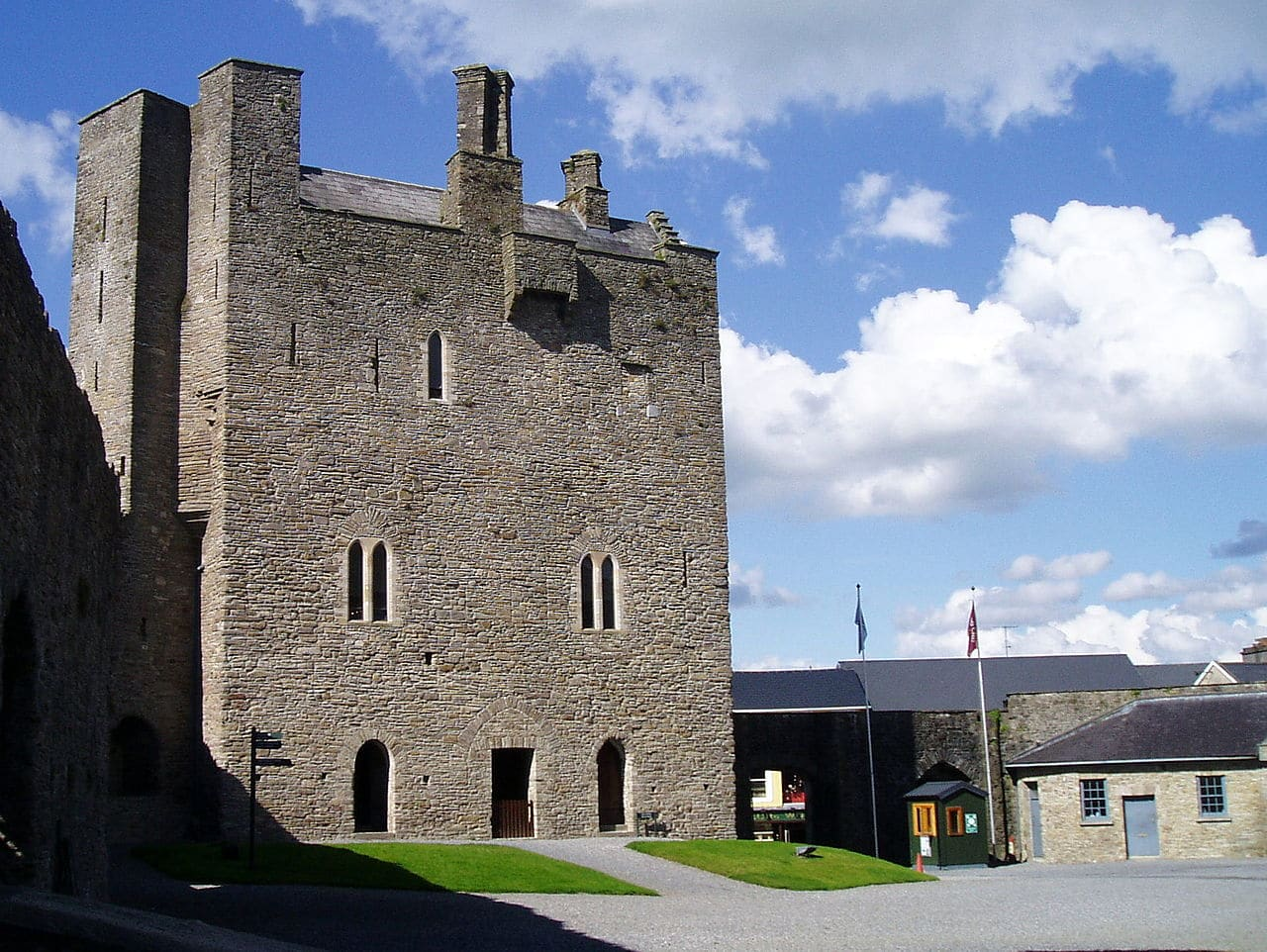 Roscrea_Castle.._._a_view_from_Damer_House