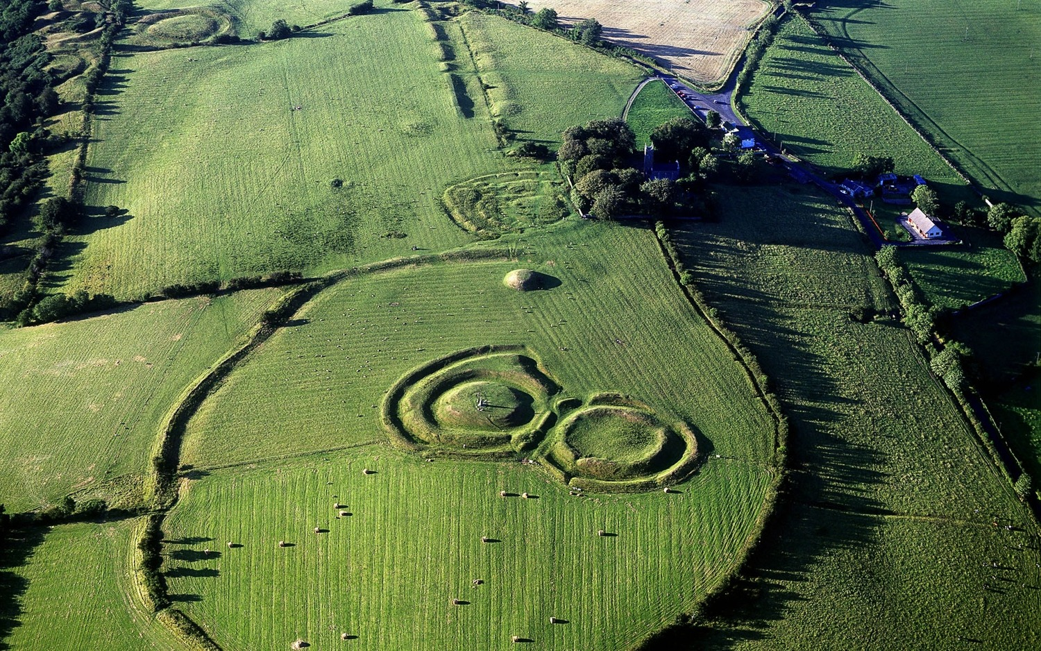 Round Earthworks at the Hill of Tara, County Meath, Leinster, Ireland
