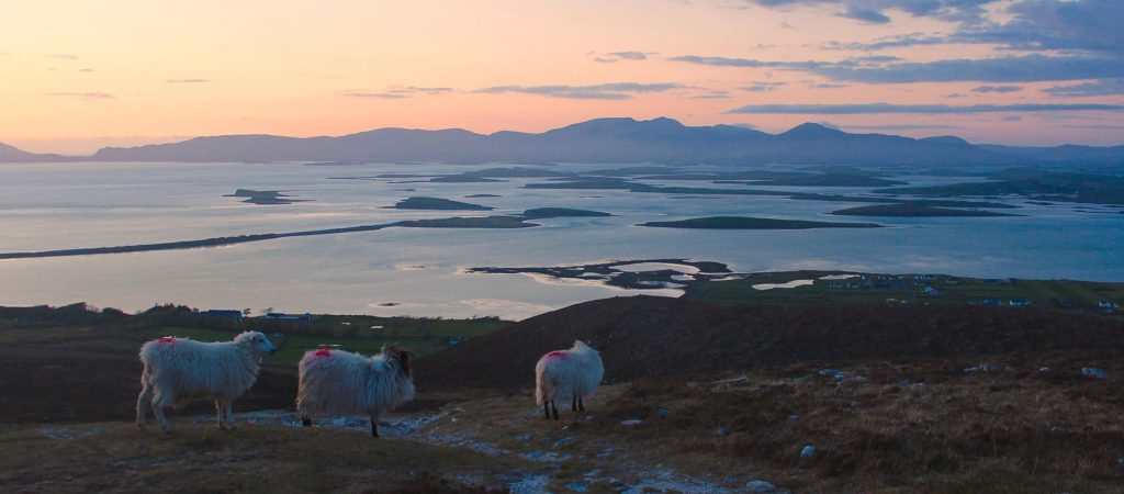 A visit to Clew Bay is one of the top things to do in Mayo.