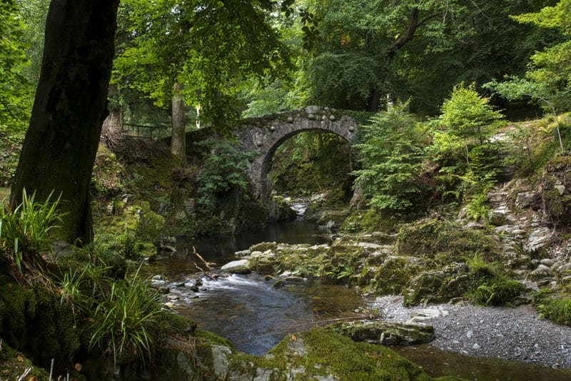 Tollymore Forest Park is an amazing forest park in County Down