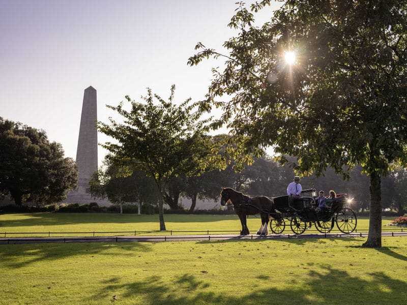 Phoenix Park is one of the top 20 must-visit attraction in Dublin, be sure to check it out.