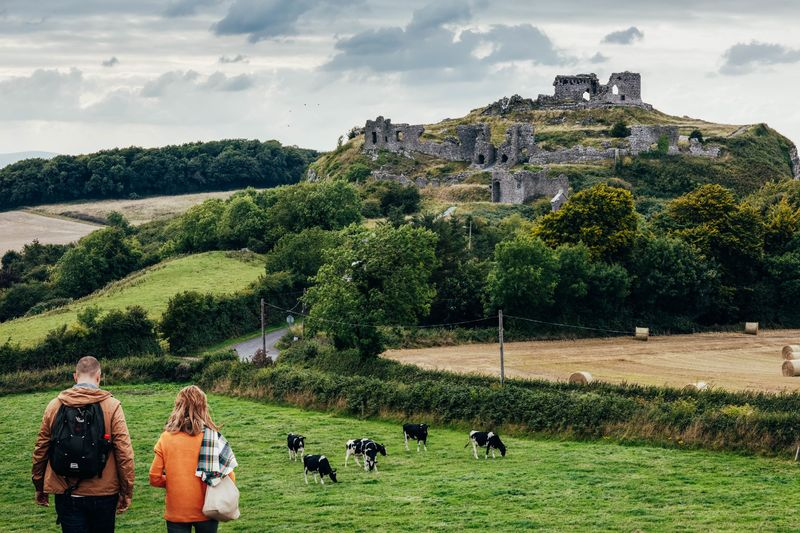 One of the top places in Ireland the locals don't want you to know about is Rock of Dunamase, a fortress that is dripping in atmosphere.