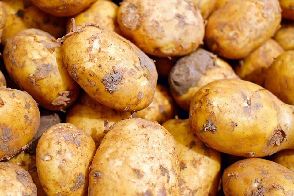 No Irish culture list would be complete without mentioning potatoes, a staple of the Irish diet.