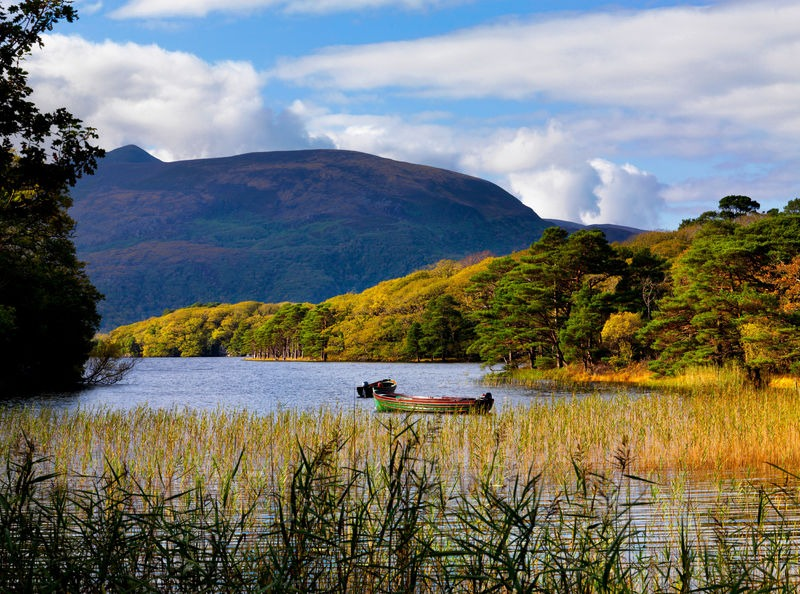 Killarney National Park is a must-see when spending 48 hours in Killarney