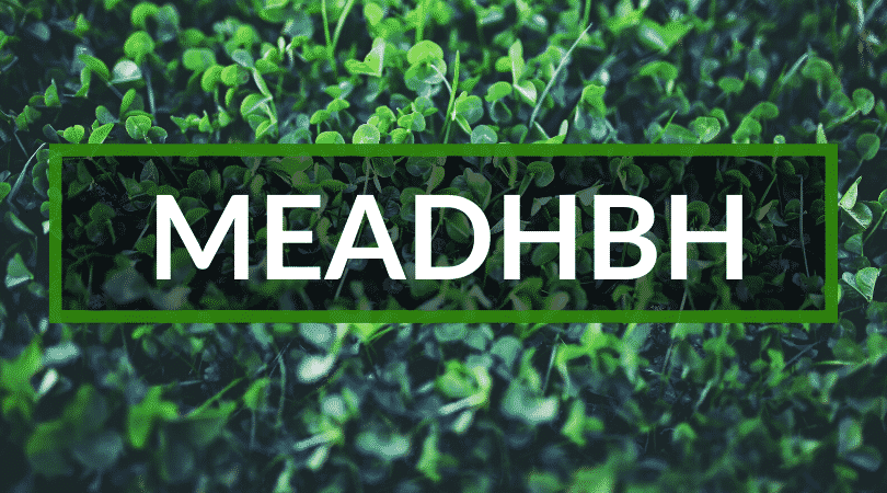 Meadhbh is a beautiful Irish name but is difficult to say. It's one of the top weird Irish names.