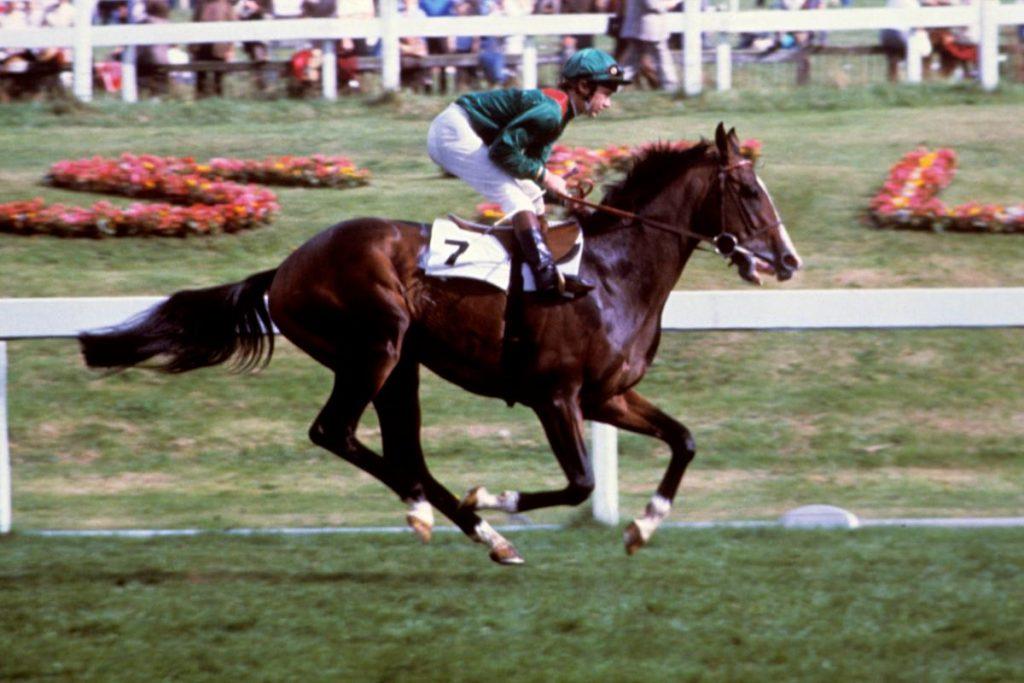 Shergar was a prize-winning horse.
