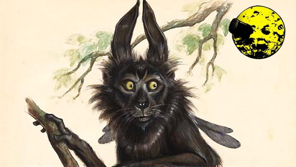 The Pooka is a shape change known from mythology.