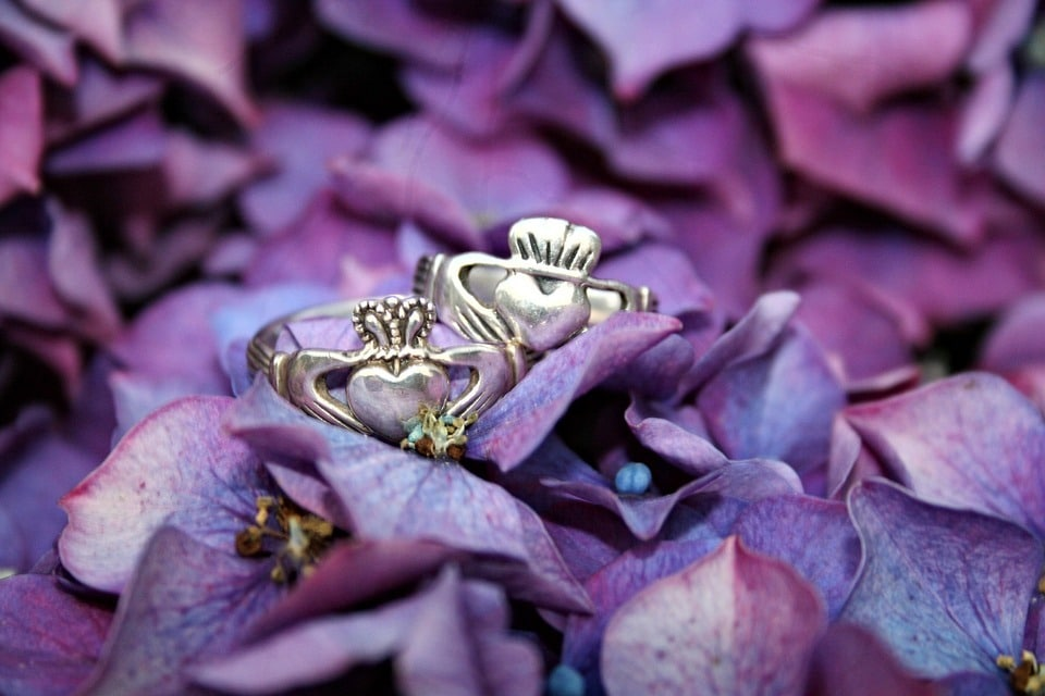 The Claddagh ring is another one of the Irish Celtic symbol for family.
