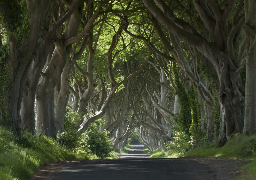 All fans of Game of Thrones have to take a tour of the country, a must-see.