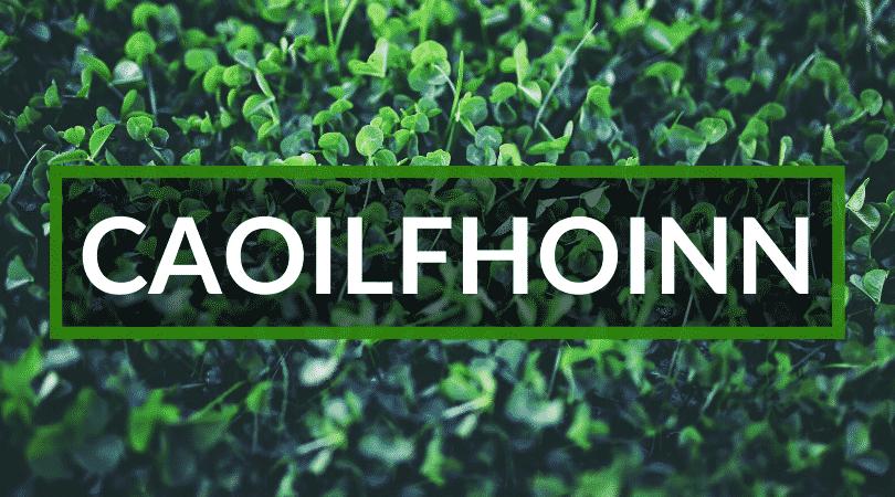 Caoilfhionn is a name that means slender and fair.