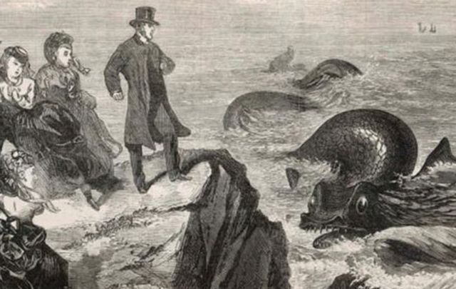 Ireland's Loch Ness Monster 'Spotted' In County Clare