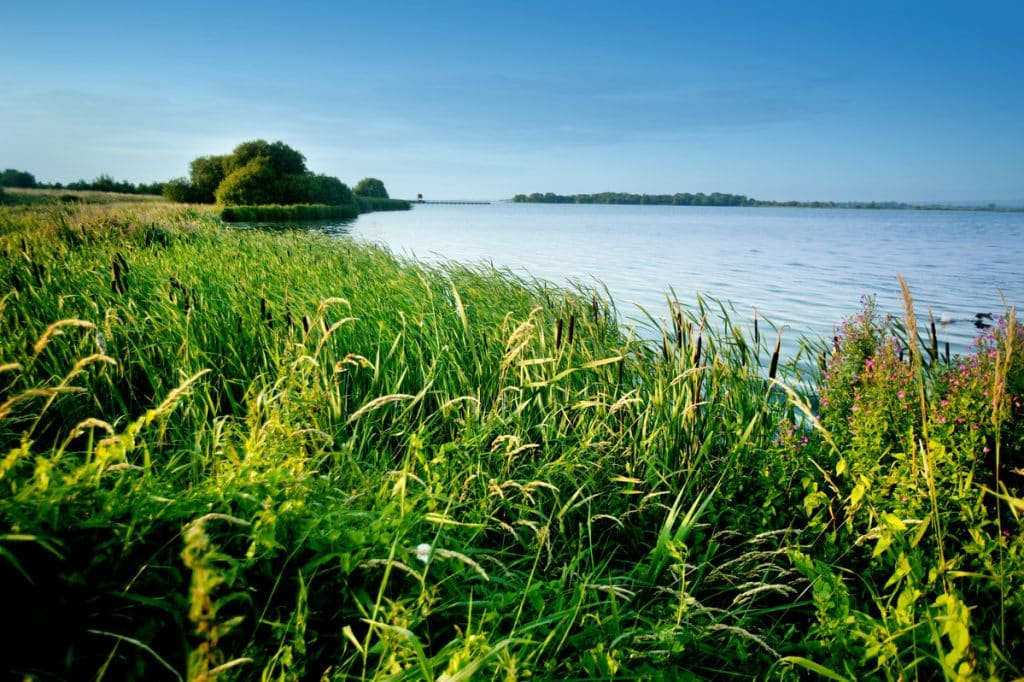 Oxford Island is a must for nature lovers.