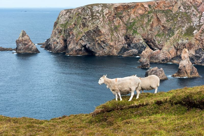 5 Things To See And Do On Arranmore Island Co Donegal