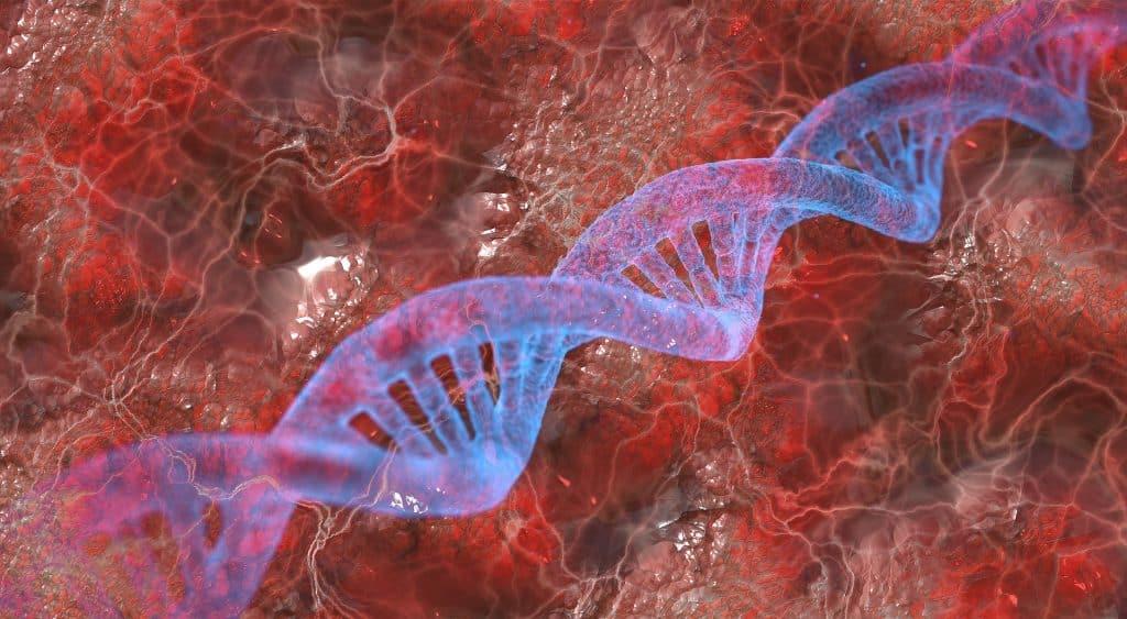DNA kits