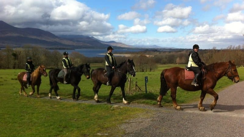 Trail Ride on Horseback close to killarney