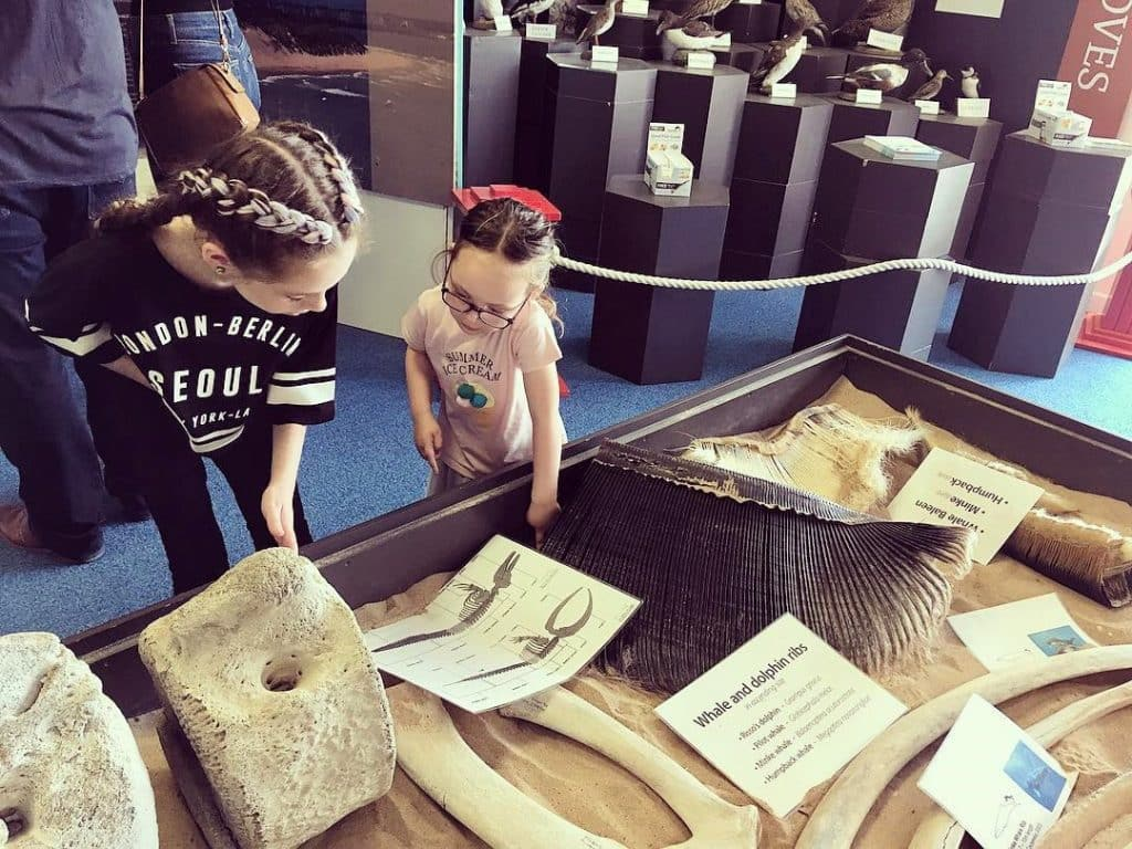 The Portrush Coastal Zone offers an interactive learning experience