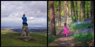Here are the 5 best hikes and walks in County Offaly