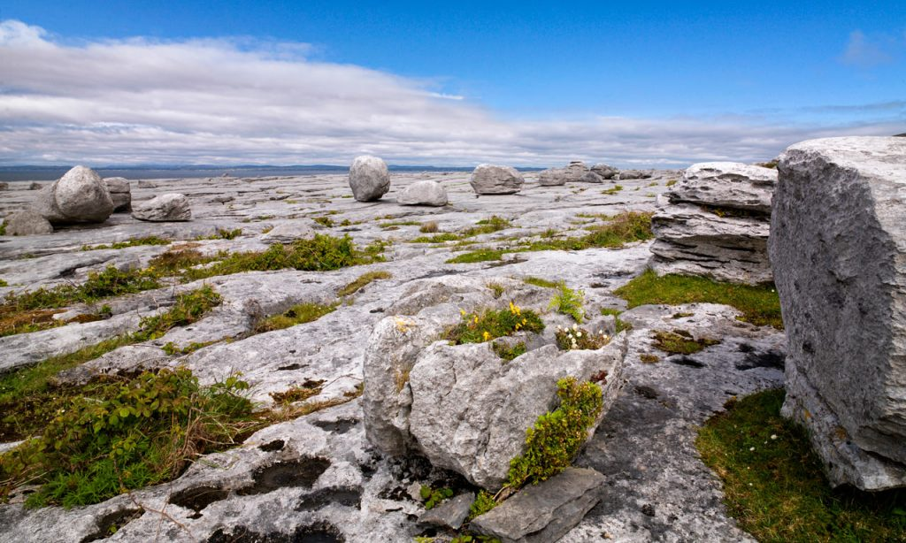 Burren National Park is located in County Clare