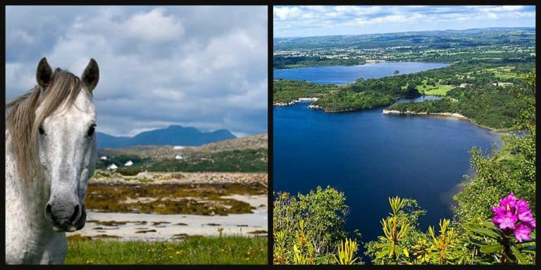 The 6 stunning national parks of Ireland