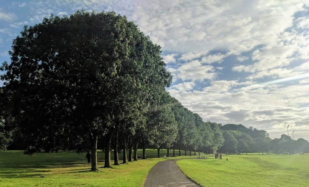 Ormeau Park is one of the 5 best places to take a walk in Belfast