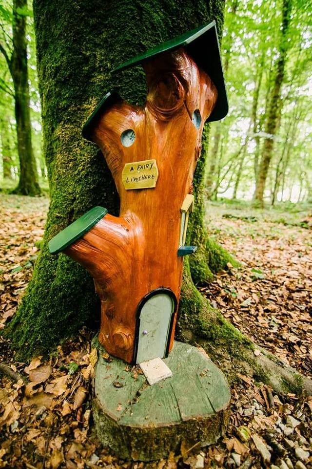 The fairy trail at Belleek Woods in Mayo is pure magic