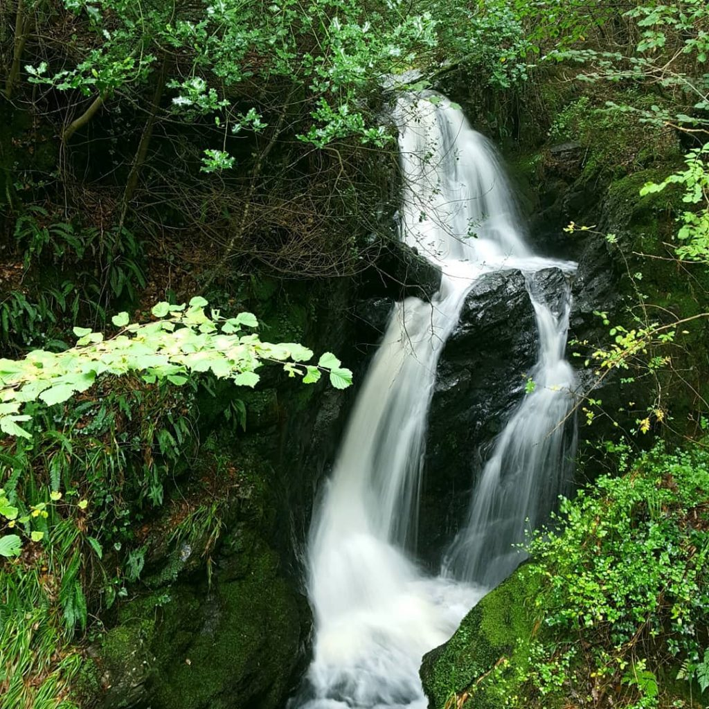 Tollymore Forest Park is a must-visit in Northern Ireland
