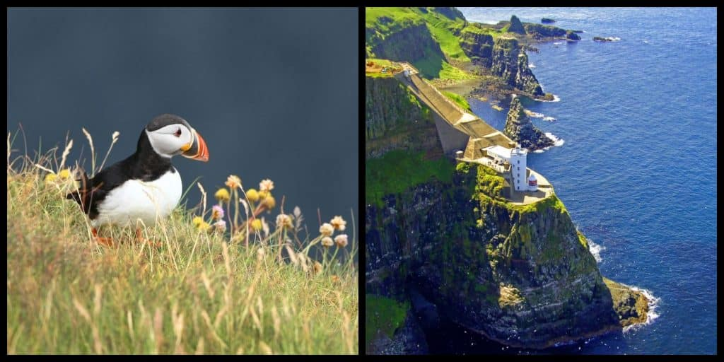 5 exciting reasons to visit Rathlin Island