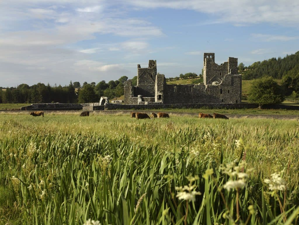 Fore Abbey is one of the top 10 medieval ruins in Ireland