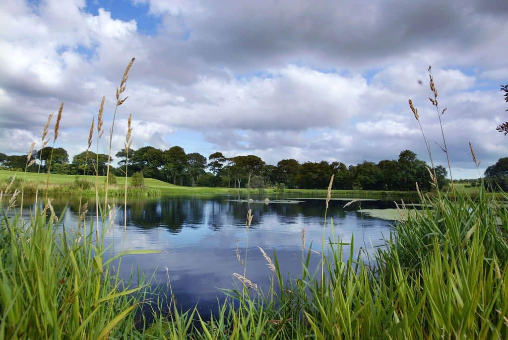 Gracehill Golf Course is one of the top 10 highest-rated golf courses in Northern Ireland