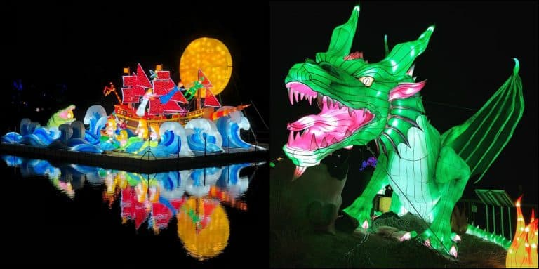 The Wild Lights at Dublin Zoo are back
