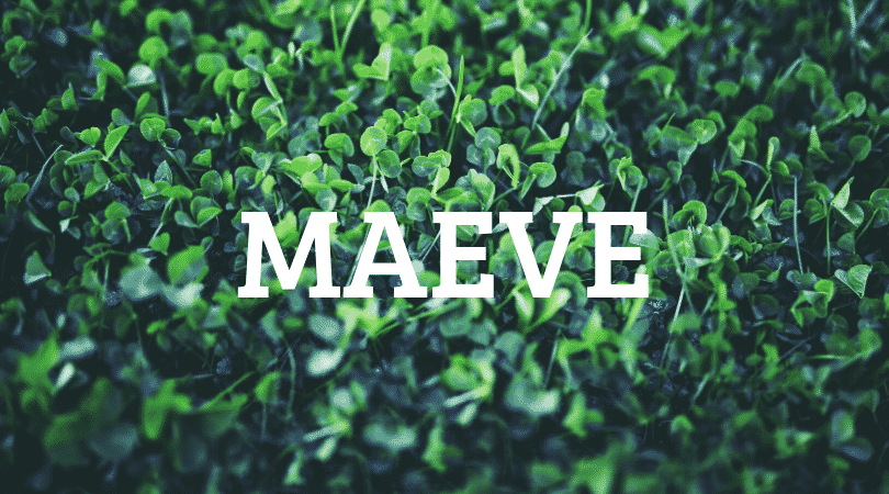 Maeve is another of our top 10 Irish first names no one can pronounce, there are so many vowels inside of it.