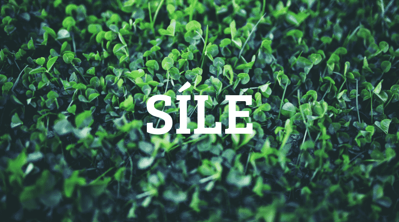 Síle is our number one pick for difficult Irish names to pronounce, a mouthful and challenge for any speaker.