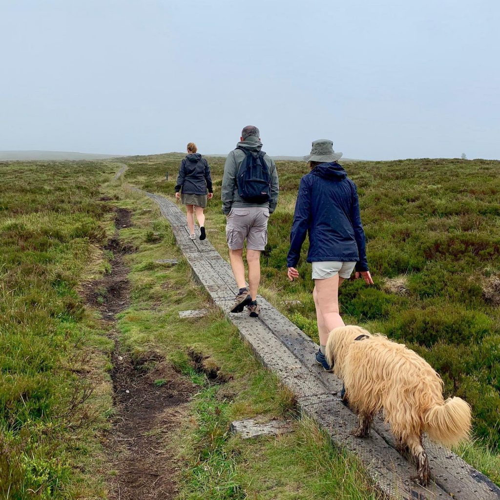 Djouce Mountain offers variety for keen hikers