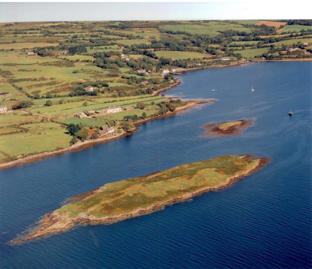 5 amazing islands for sale in Ireland right now include Mannion Island