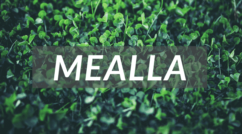 Mealla is a pretty name for a girl, as well as a unusual Irish girl name.