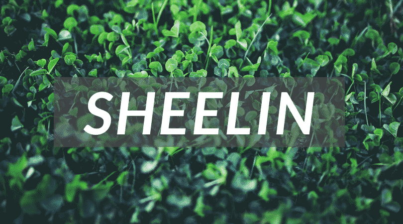 """Sheelin is a pretty name that means """"fairies"""", why not give it to your little girl, just another unusual Irish girl names."""