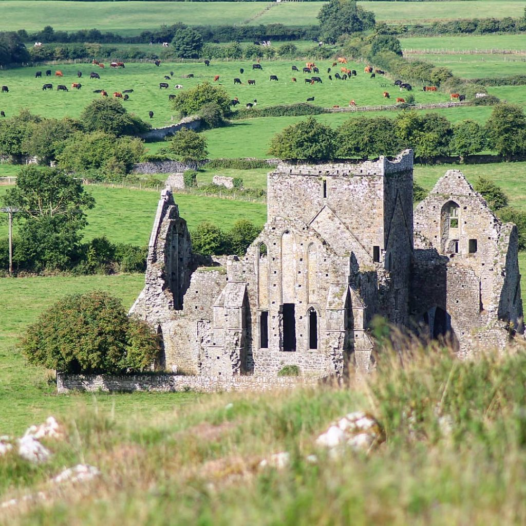 Hore Abbey is another of the top places in Ireland that the locals don't want you to know about, it's serene and peaceful.