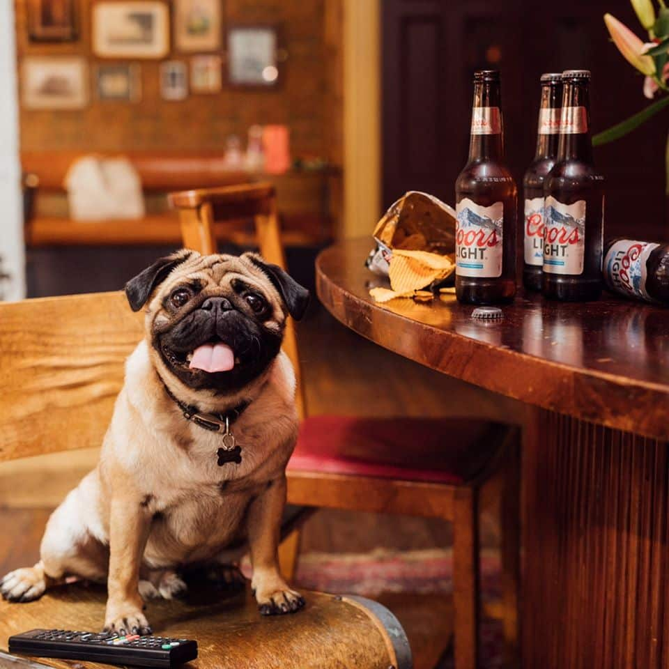 Belfast bars and pubs with quirky names include Pug Uglys