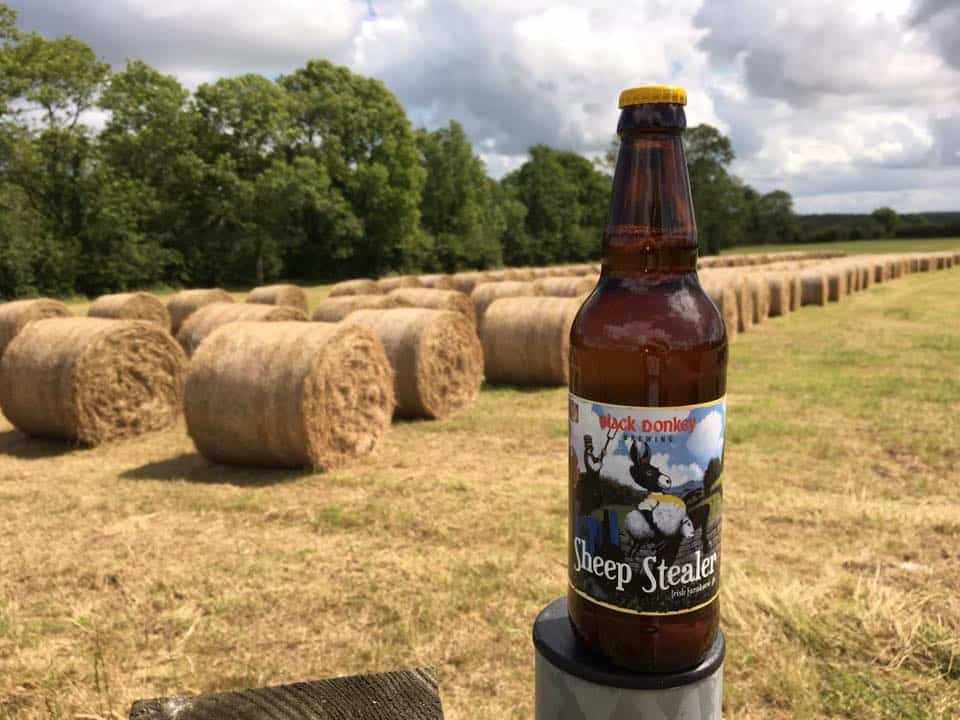 Black Donkey's Sheep Stealer is a great Roscommon beer only made in that area.