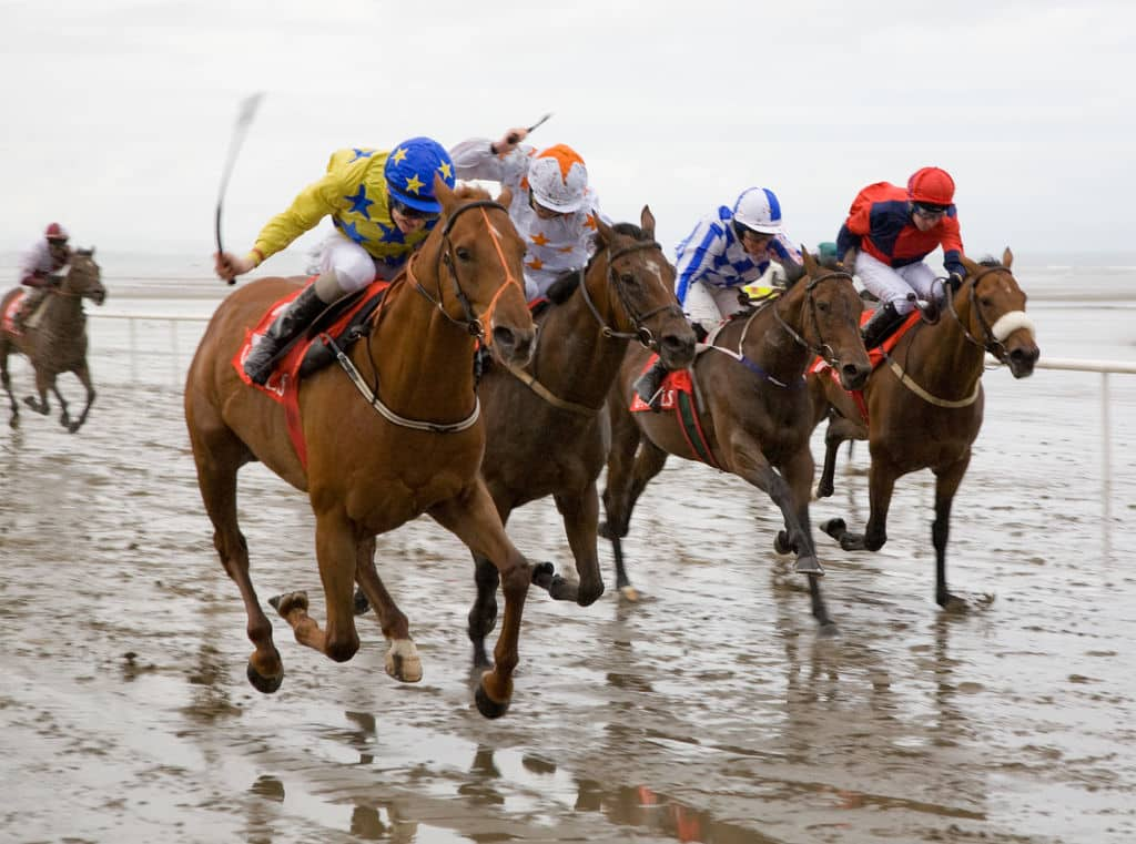 Laytown Racecourse is a coastal route and unique course, another of the best racecourses in Ireland.