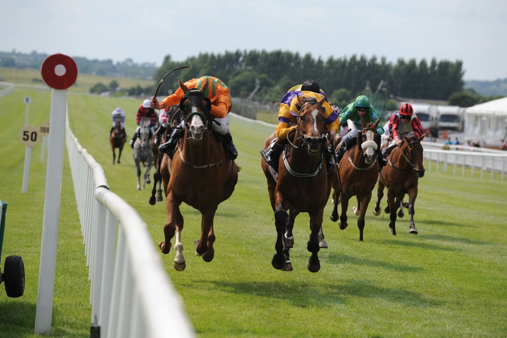 Curragh Racecourse is one of the best racecourses in Ireland