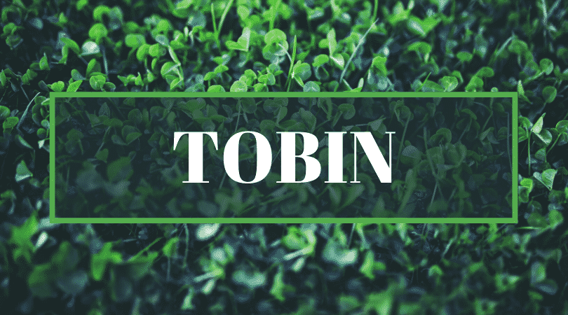 Tobin is another of the top Irish surnames even Irish people struggle to pronounce.
