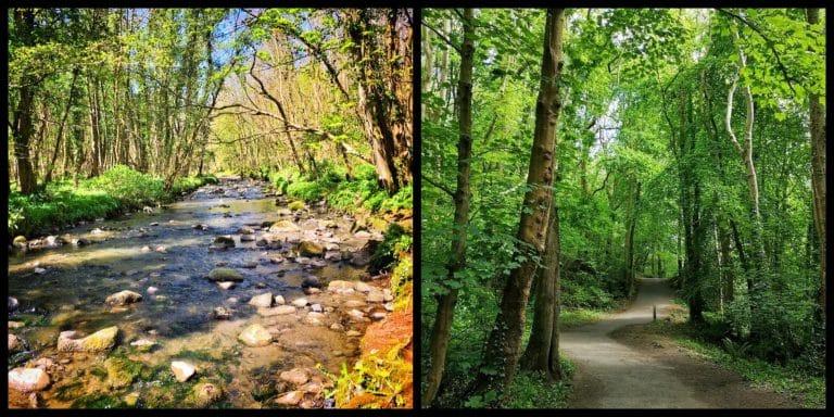 Hidden Gem of the Week: Colin Glen Forest Park (Belfast, Co. Antrim)