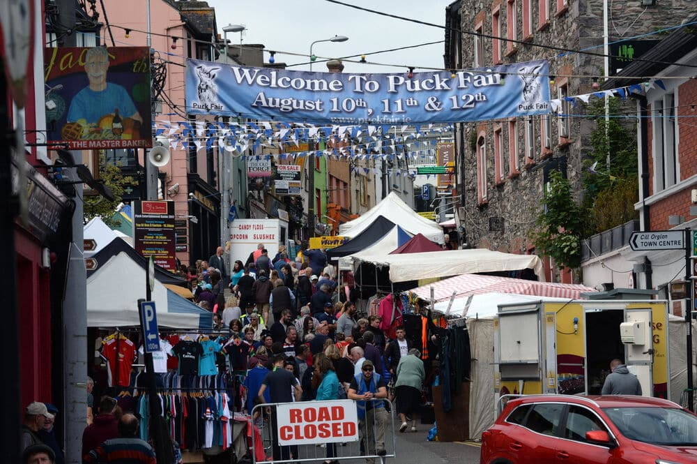 Attend the Puck Fair – Ireland's oldest festival.